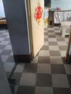 1室1厅1卫50平方