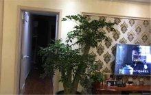 (密州)大源·枫香湖畔3室2厅2卫131m²豪华装修